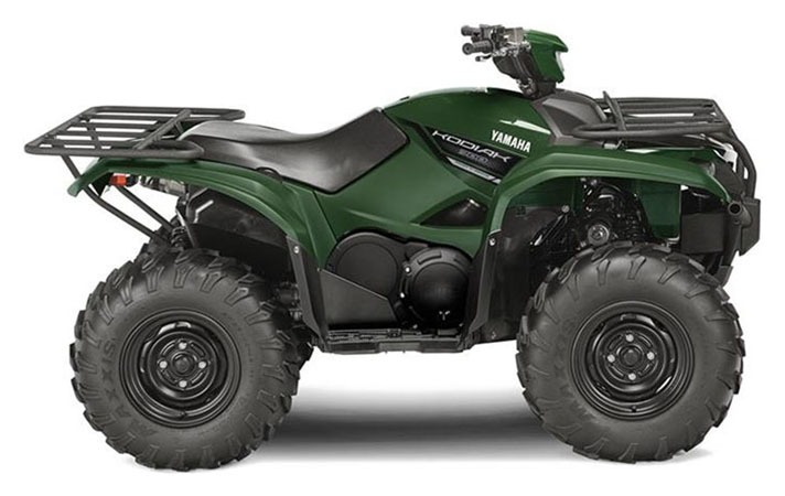 2018 Yamaha Kodiak 700 EPS in Hobart, Indiana - Photo 1