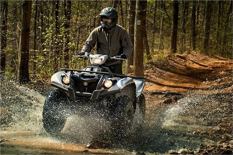 2018 Yamaha Kodiak 700 EPS SE in Coloma, Michigan