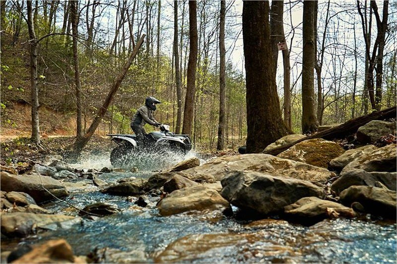 2018 Yamaha Kodiak 700 EPS SE in Brewton, Alabama - Photo 5