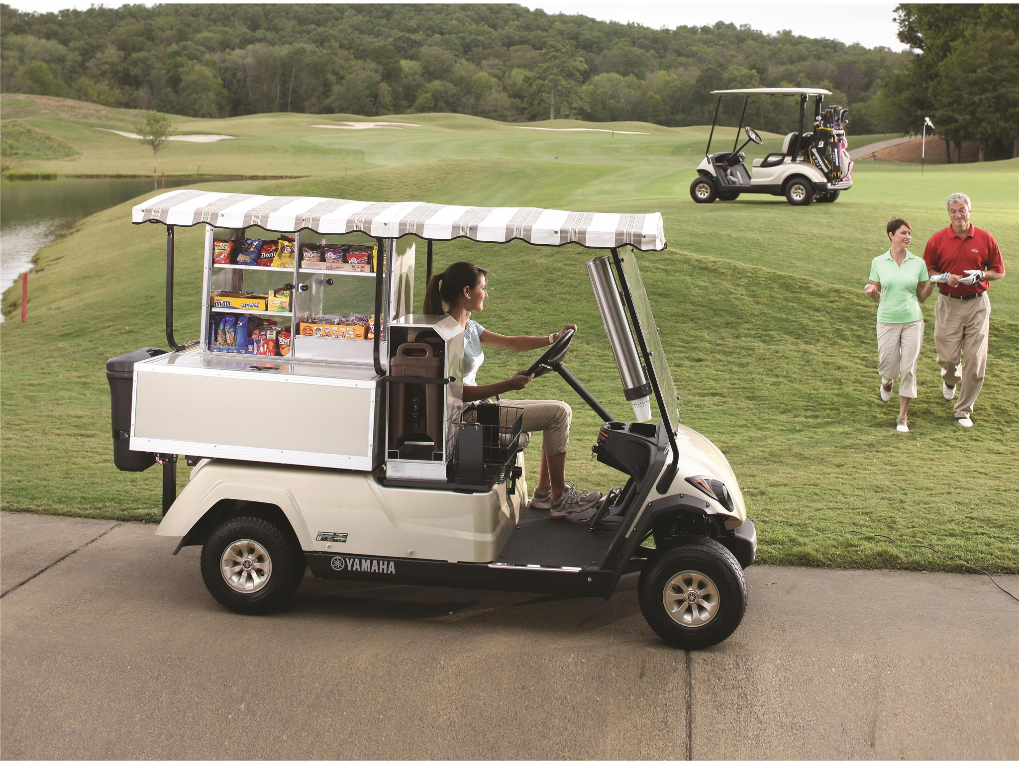 2018 Yamaha Fairway Lounge (Gas EFI) in Caruthersville, Missouri