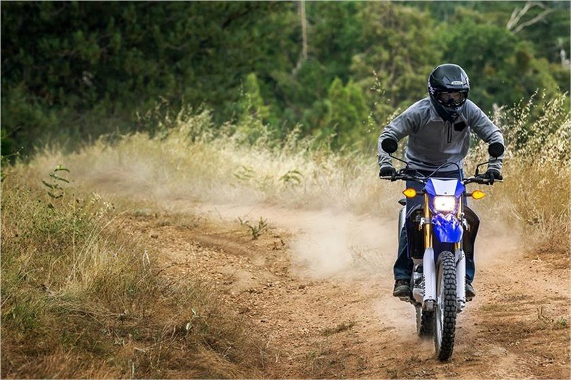 2018 Yamaha WR250R in Hicksville, New York - Photo 6