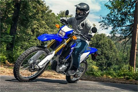 2018 Yamaha WR250R in Geneva, Ohio