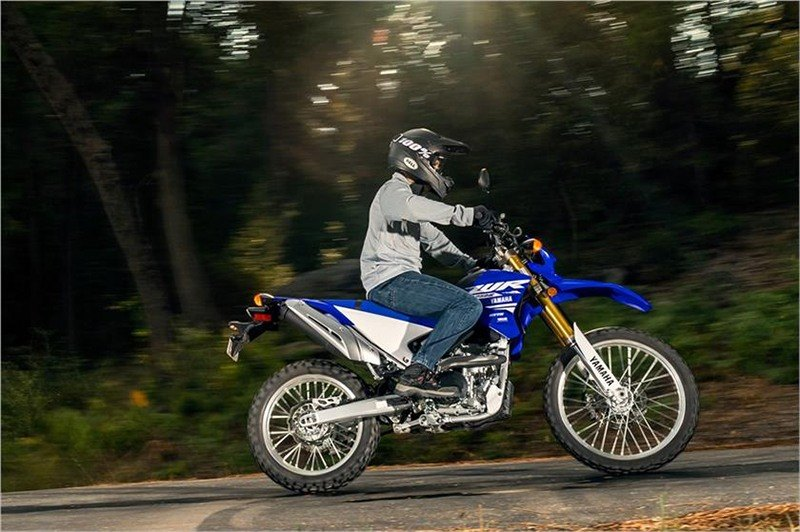 2018 Yamaha WR250R in Coloma, Michigan