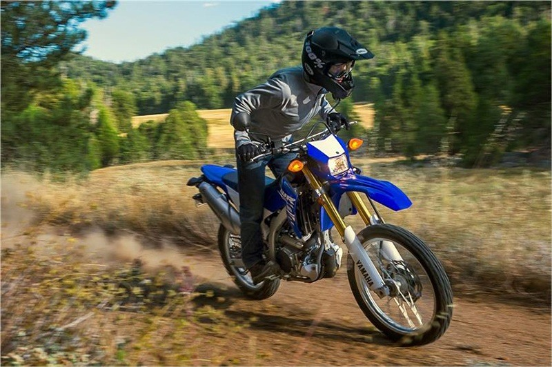 2018 Yamaha WR250R in Baldwin, Michigan