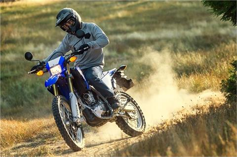 2018 Yamaha WR250R in Victorville, California