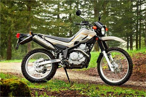 2018 Yamaha XT250 in State College, Pennsylvania