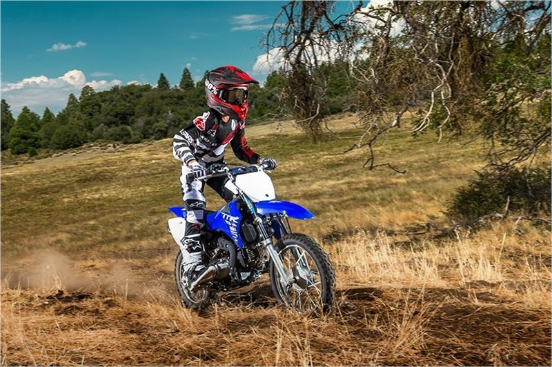 2018 Yamaha TT-R110E in Modesto, California