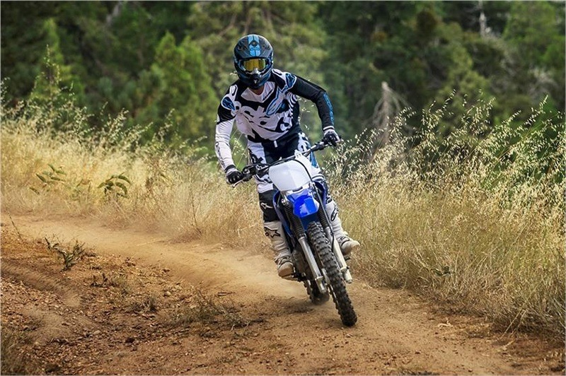 2018 Yamaha TT-R230 in Johnson Creek, Wisconsin - Photo 13