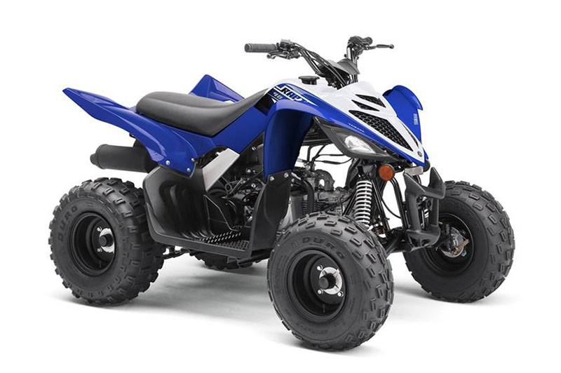 2019 Yamaha Raptor 90 in Francis Creek, Wisconsin - Photo 2