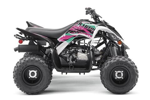 2019 Yamaha Raptor 90 in Francis Creek, Wisconsin