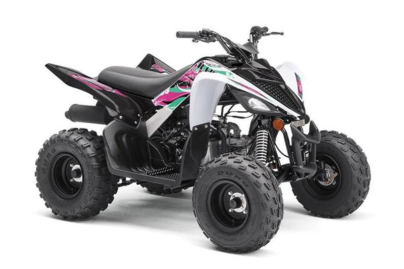 2019 Yamaha Raptor 90 in Greenville, North Carolina