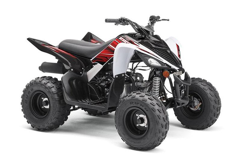 2019 Yamaha Raptor 90 in Danbury, Connecticut
