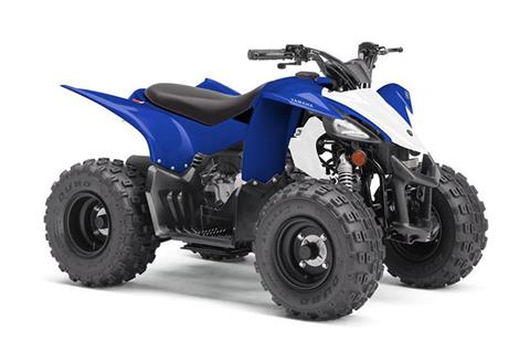 2019 Yamaha YFZ50 in Francis Creek, Wisconsin