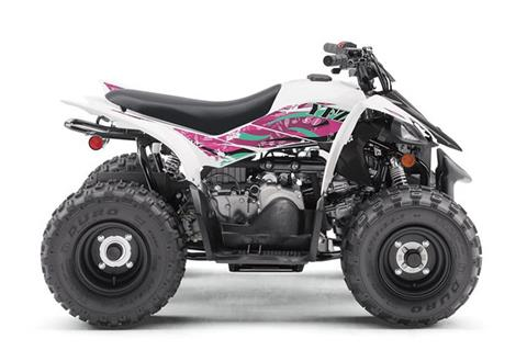 2019 Yamaha YFZ50 in Tamworth, New Hampshire