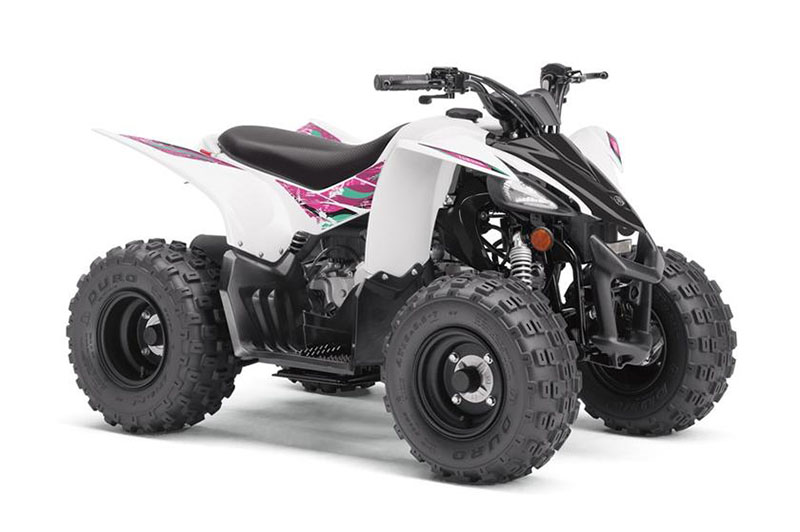 2019 Yamaha YFZ50 in Lakeport, California