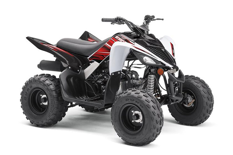 2019 Yamaha YFZ50 in Pine Grove, Pennsylvania