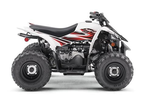 2019 Yamaha YFZ50 in Kingman, Arizona