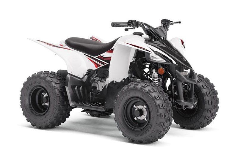 2019 Yamaha YFZ50 in Hailey, Idaho