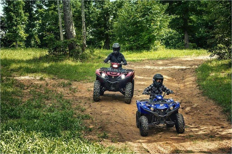 2019 Yamaha Grizzly 90 in Philipsburg, Montana