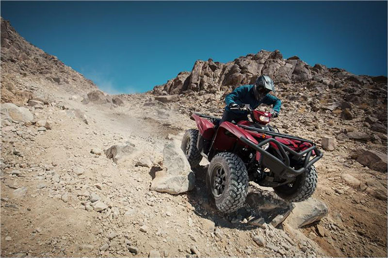 2019 Yamaha Grizzly EPS in Santa Maria, California