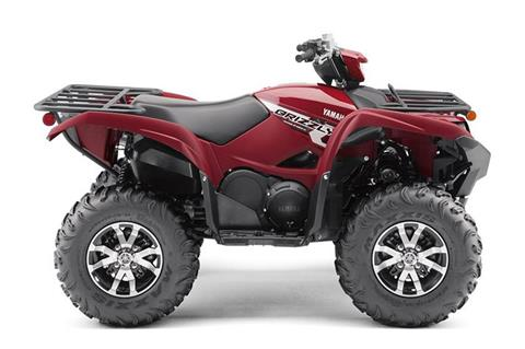 2019 Yamaha Grizzly EPS in Francis Creek, Wisconsin