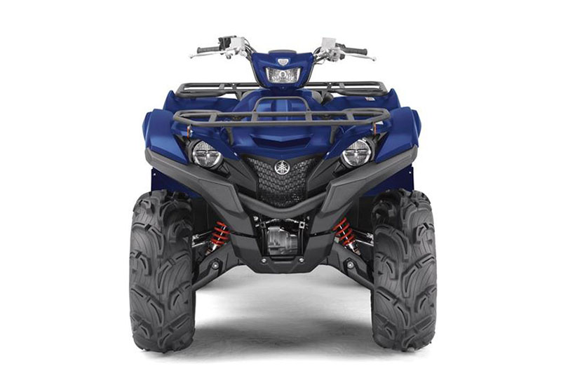 2019 Yamaha Grizzly EPS SE in Belle Plaine, Minnesota