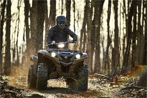 2019 Yamaha Grizzly EPS SE in Albemarle, North Carolina