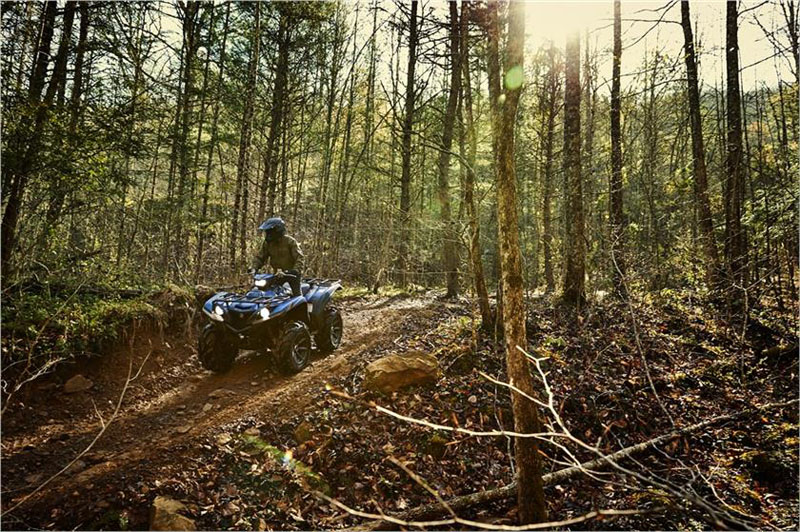 2019 Yamaha Grizzly EPS SE in Brenham, Texas
