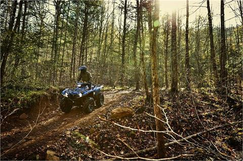 2019 Yamaha Grizzly EPS SE in Brewton, Alabama - Photo 9