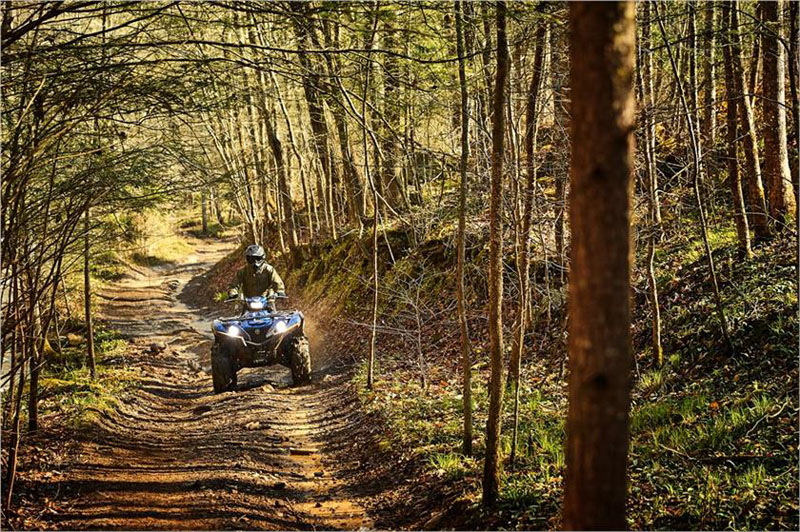 2019 Yamaha Grizzly EPS SE in Ebensburg, Pennsylvania - Photo 10