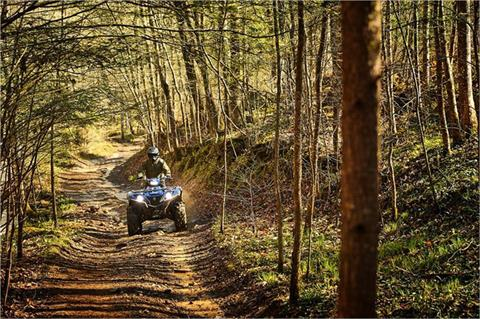 2019 Yamaha Grizzly EPS SE in Asheville, North Carolina