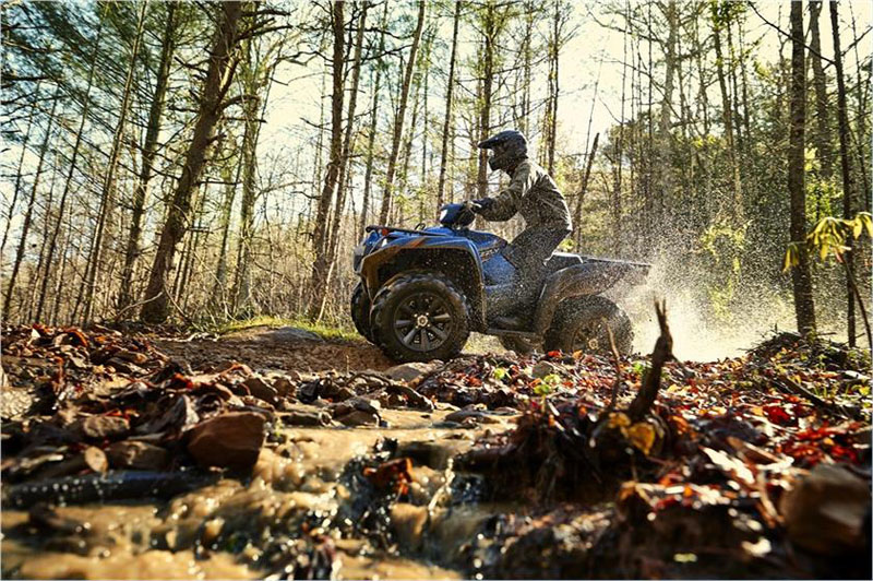 2019 Yamaha Grizzly EPS SE in Brilliant, Ohio
