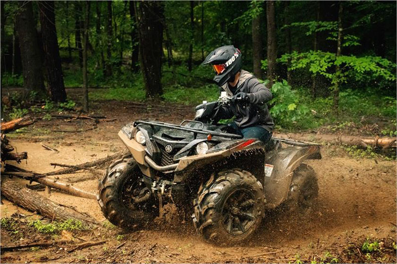 2019 Yamaha Grizzly EPS SE in Greenville, North Carolina