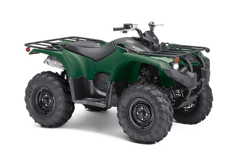 2019 Yamaha Kodiak 450 in Lakeport, California