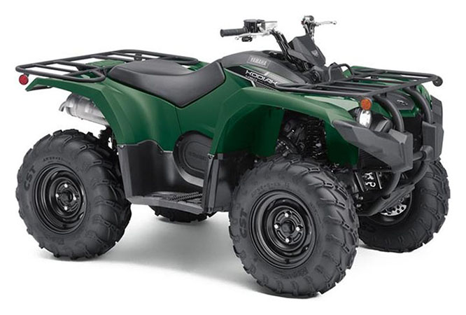 2019 Yamaha Kodiak 450 in Greenwood, Mississippi - Photo 2