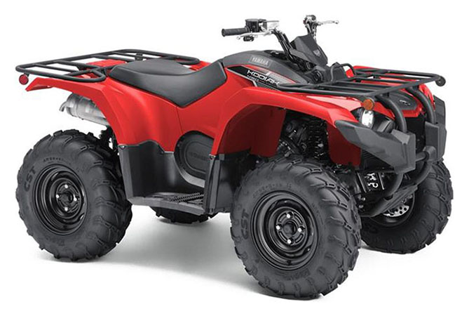 2019 Yamaha Kodiak 450 in Johnson City, Tennessee - Photo 2