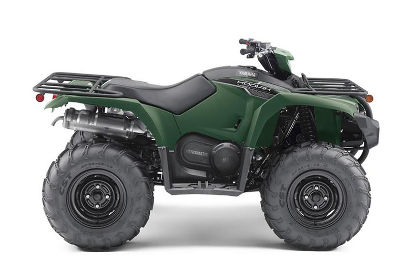 2019 Yamaha Kodiak 450 EPS in Hickory, North Carolina