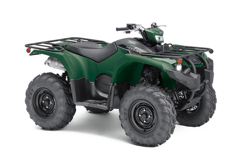 2019 Yamaha Kodiak 450 EPS in Unionville, Virginia