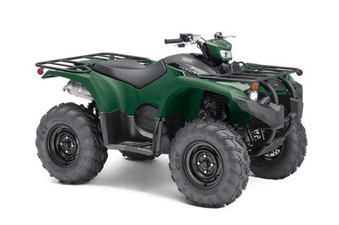 2019 Yamaha Kodiak 450 EPS in Northampton, Massachusetts