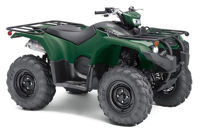 2019 Yamaha Kodiak 450 EPS in Geneva, Ohio - Photo 2