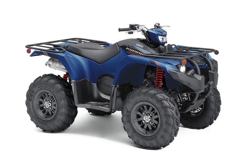 2019 Yamaha Kodiak 450 EPS SE in Billings, Montana - Photo 2