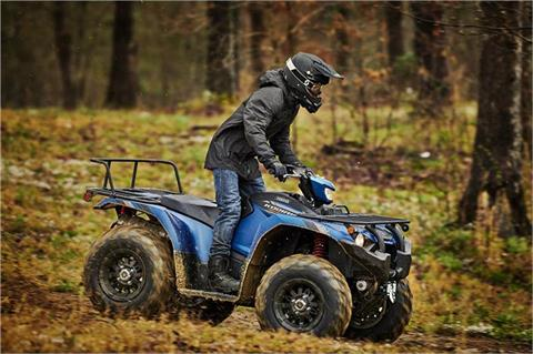 2019 Yamaha Kodiak 450 EPS SE in Sacramento, California - Photo 4