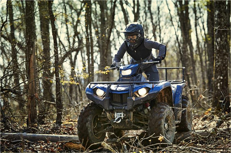 2019 Yamaha Kodiak 450 EPS SE in Sacramento, California