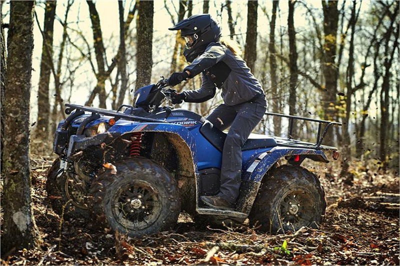 2019 Yamaha Kodiak 450 EPS SE in Zephyrhills, Florida - Photo 6