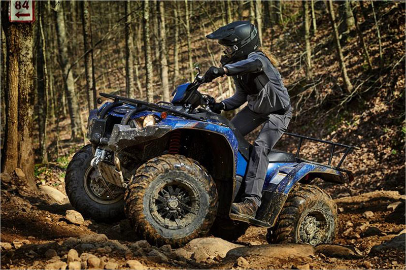 2019 Yamaha Kodiak 450 EPS SE in Santa Clara, California - Photo 8