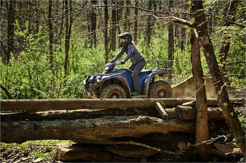 2019 Yamaha Kodiak 450 EPS SE in Modesto, California - Photo 9