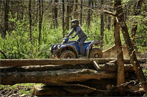 2019 Yamaha Kodiak 450 EPS SE in Danbury, Connecticut - Photo 9