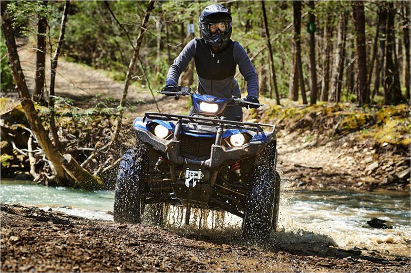 2019 Yamaha Kodiak 450 EPS SE in Sacramento, California - Photo 10