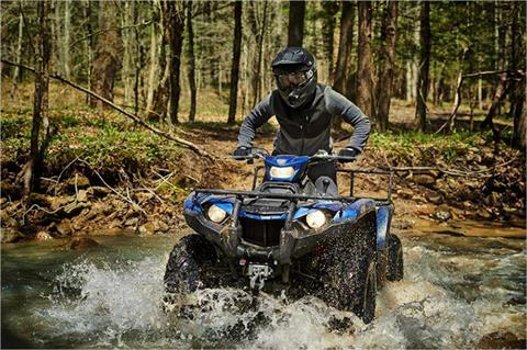 2019 Yamaha Kodiak 450 EPS SE in Carroll, Ohio