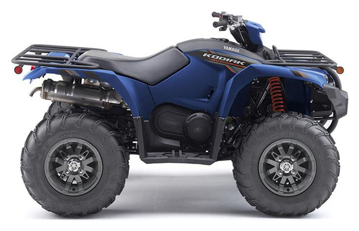 2019 Yamaha Kodiak 450 EPS SE in Sacramento, California - Photo 1